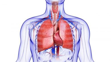 Photo of How Vitamin C Affects Lung Health