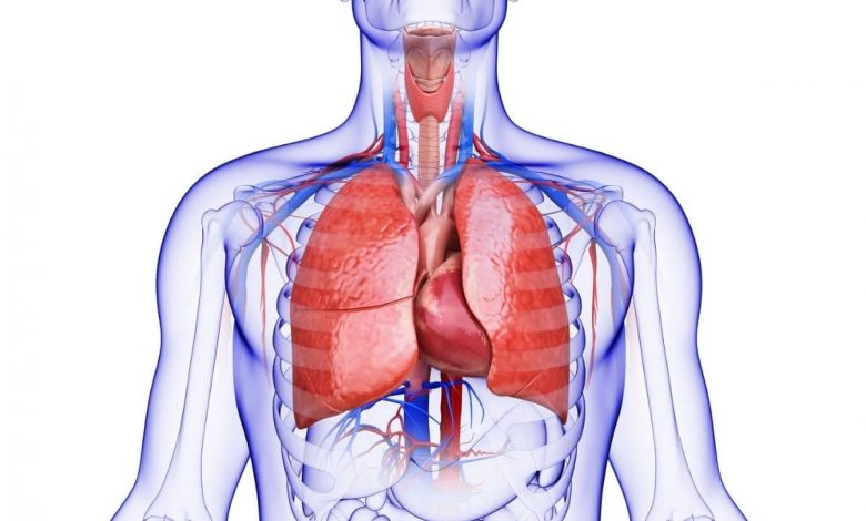 how-vitamin-c-affects-lung-health