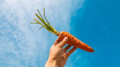 Photo of What is the nutritional value of carrots and why is it beneficial for health?