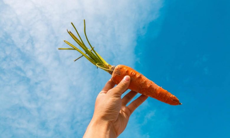 what-is-the-nutritional-value-of-carrots-and-why-is-it-beneficial-for-health?