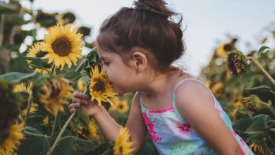 Photo of Why would smell be important to children?