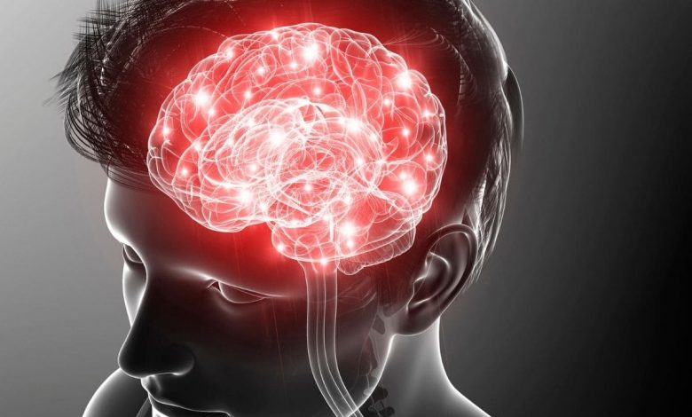 what-role-does-bilirubin-play-in-protecting-the-brain?