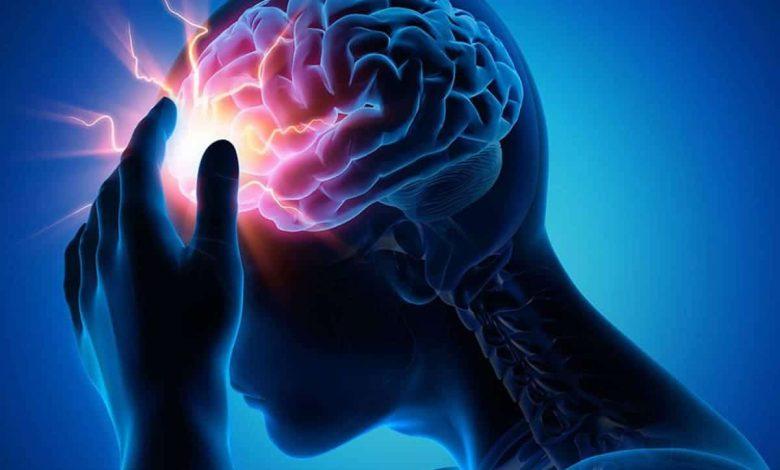 a-rich-acid-may-have-neuroprotective-capacity