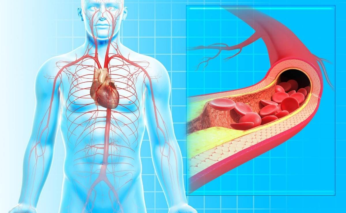 10-home-remedies-to-improve-blood-circulation