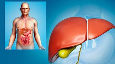 Photo of 4 beneficial superfoods for the gallbladder